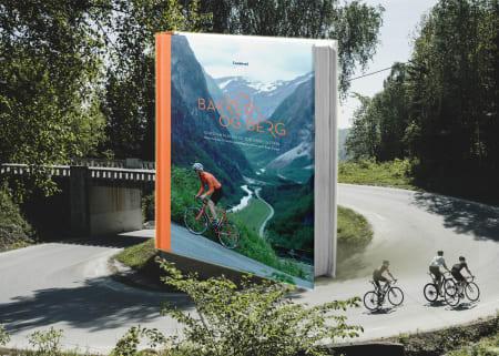Bakker og berg av Geir Stian Ulstein på Fri Flyt forlag