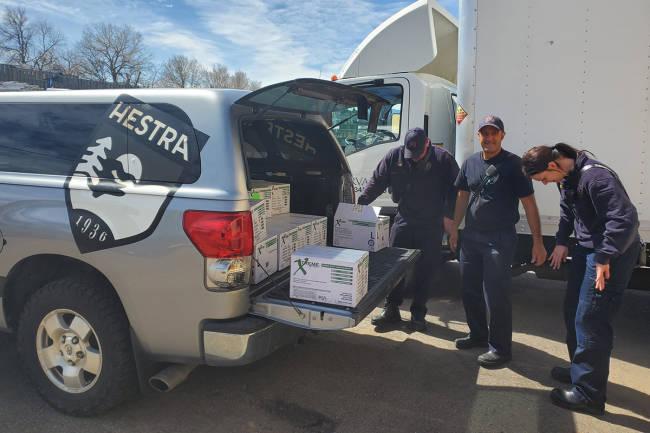 Hestra gir bort 38.000 hansker til helsevesenet