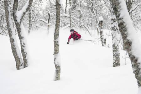 FORSVARLIG BRUK AV ALPINANLEGG: Hva er egentlig forsvarlig bruk av alpinanlegg og alpinvett? Her illustrert med skogskjøring i Hemsedal. Foto: Ola Matsson