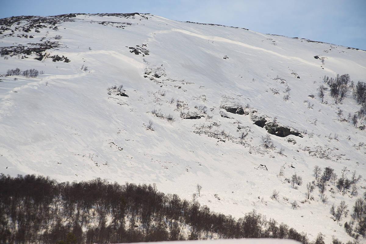 Snøskred i Oppdal