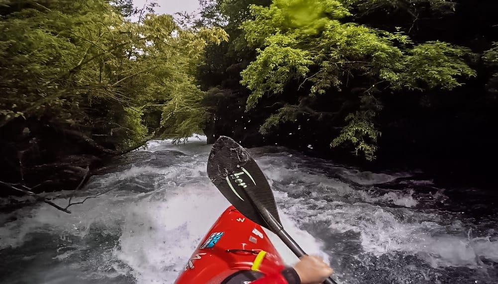 JUNGEL: Fete stryk og jungel på Rio Llancahue.