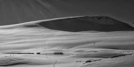 Foto: Jan Inge Larsen