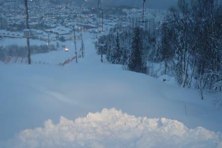 NYSNØ: Narvikfjellet fikk en meter nysnø i løpet av natta. Foto: Helle Holt