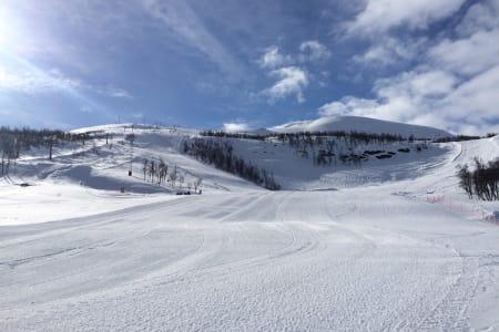 TYIN/FILEFJELL: I dag er det veldig bra. I går kom det faktsisk 10 cm med snø, sier Magne Grihamar. Foto: Tyin/Filefjell