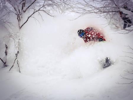 Stig H. Våge – Hokkaido. Linselus: Kjell Inge Gausland