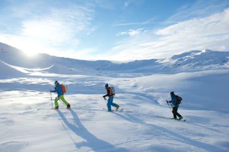 Ivrige skiløpere.