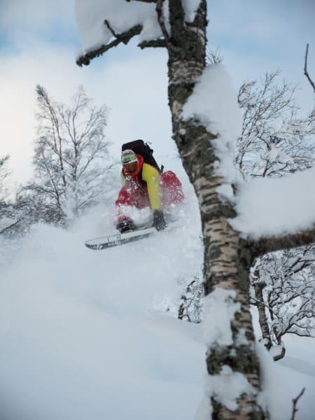 Den perfekte skog? Dagfinn utnytter i alle fall både skog og snø til det ytterste.
