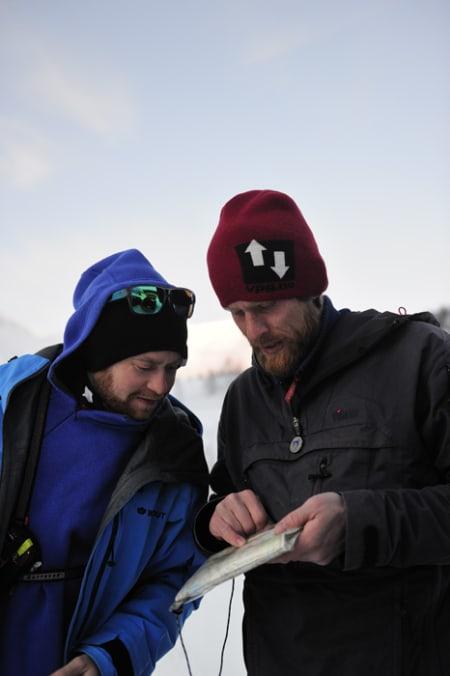 Field-filmer Espen Kristiansen leser kart sammen med Toro. Foto: Endre Løvaas