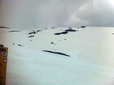 HER BLIR DET RENN: Freeline Jam kjøres på Egga og ned mot den gamle kafeen ved toppheisen på Stryn sommerskisenter. Konkurransen starter lørdag klokken 11. Foto: Asbjørn Eggebø Næss
