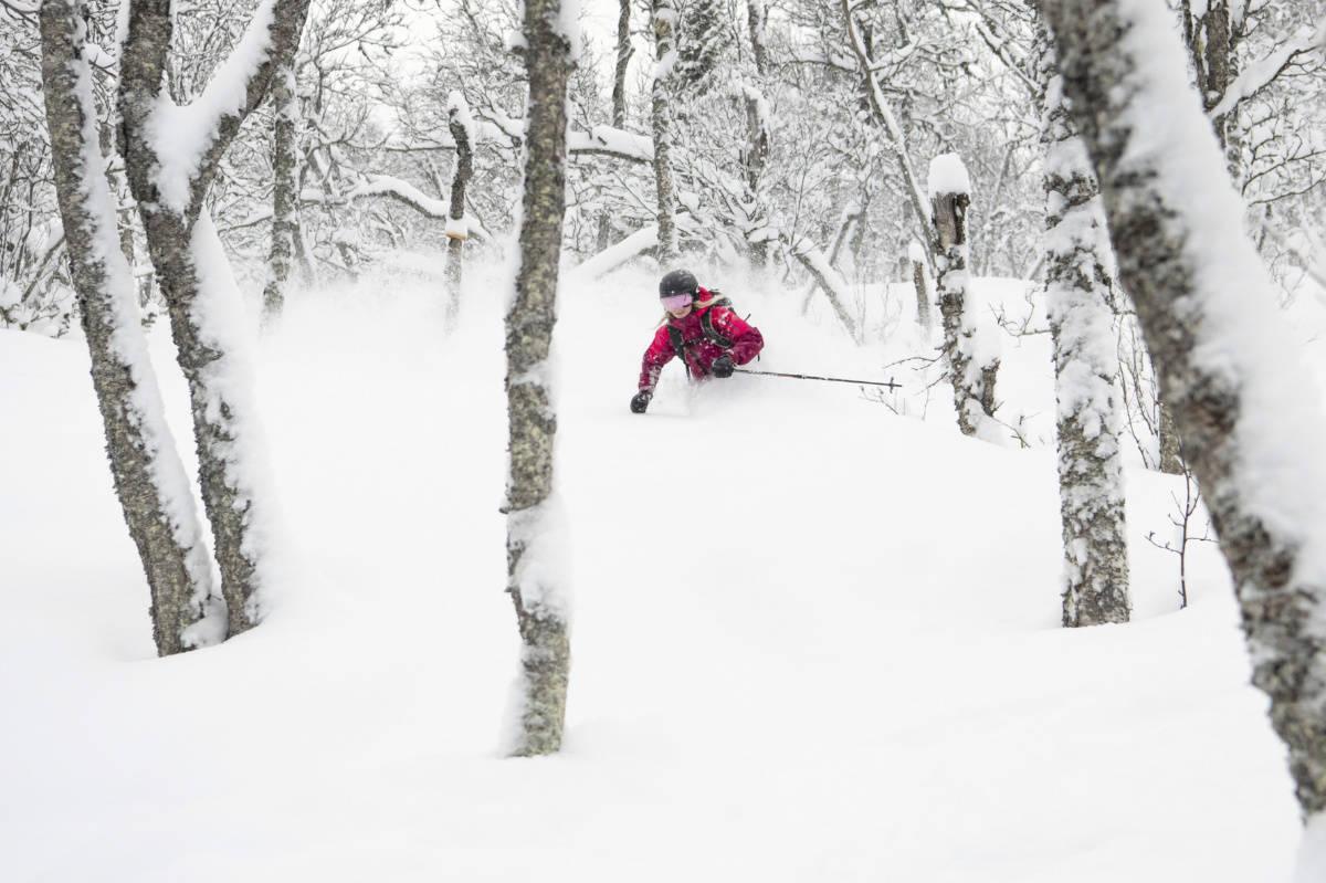 FORSVARLIG BRUK AV ALPINANLEGG: Hva er egentlig forsvarlig bruk av alpinanlegg og alpinvett? Her illustrert med skogskjøring i Hemsedal. Foto: Kalle Hägglund