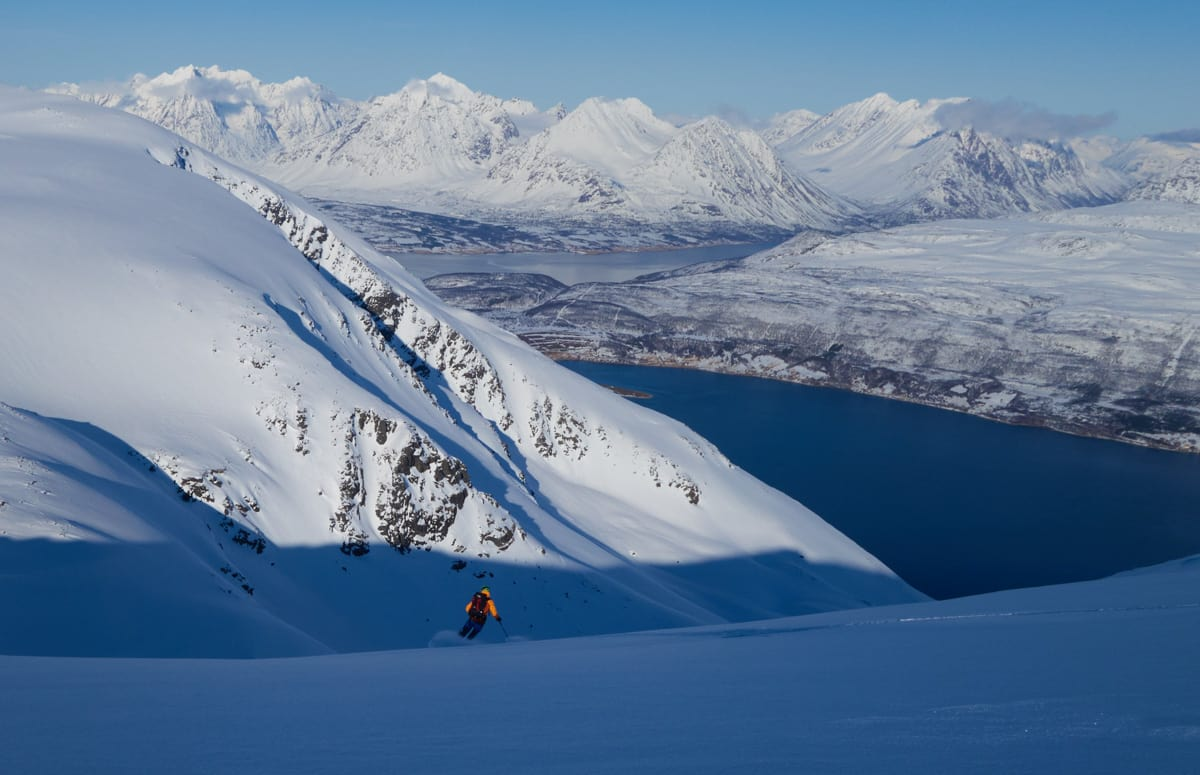 FORSKER: Universitetet i Tromsø vil forske på atferd. Foto: Andrea Mannberg