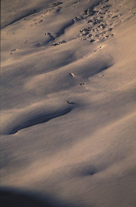 RØLDAL: Helikopteret på plass i røldalske fjell i 2005. Med spesialtillatelse for å filme og ta bilder. Foto: Endre Løvaas