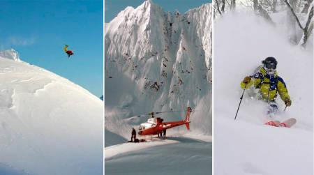 HVILKEN?: Enten du liger MSP, TGR eller Warren Miller får du garantert en rå skivinter. Finn din favoritt!