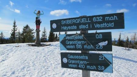 Skibergfjell, Vestfold