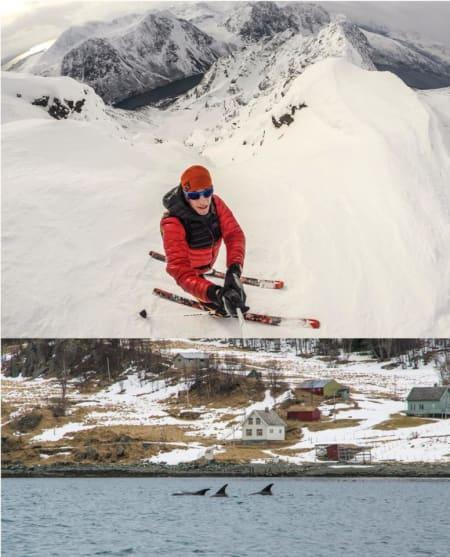 HAV OG FJELL: Kombinasjonen av bratt skikjøring og spekkhoggere på fjorden høstet mye oppmerksomhet blant Kilian Jornets følgere på Facebook. Foto: Kilian Jornet