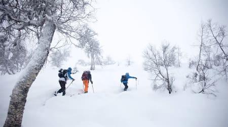 Nå er det skiføre i Sogndal