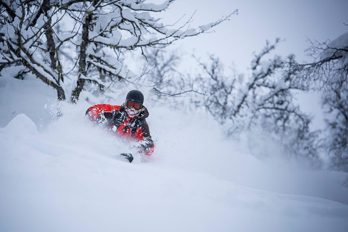 SKOGSKJØRING: Sogndal er Norges svar på Canada, og er et av stedene du finner råest skogskjøring. Foto: Vegard Breie