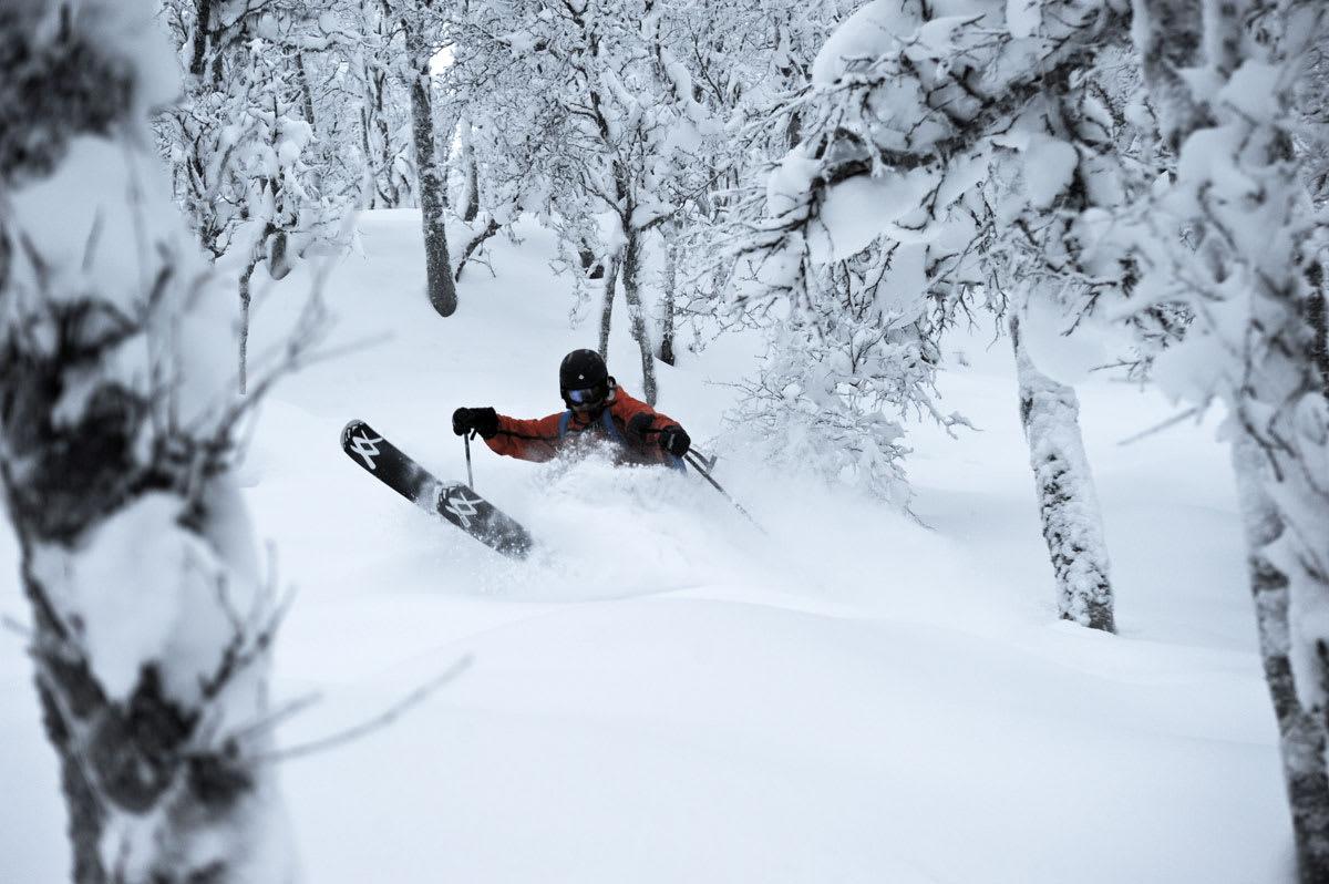 PUDDER PÅ GEILO: Dette bildet er tatt i området hvor ny heis planlegges på Geilo. Nå kan et av Norges største alpinanlegg endelig få skikkelig offpistemuligheter. Foto: Terje Halstensgård