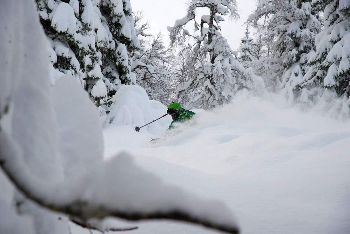 PUDDERSKOG: Voss resort kan by på pudderkjøring av ypperste merke når været er kaldt og nedbøren kommer som snø.