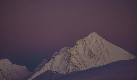 Fantastiske Lyngsalper – Foto: Ptor Spricenieks