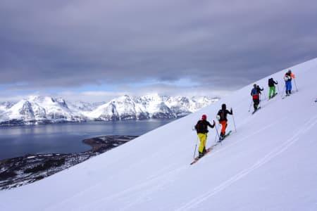 PROTESTER: – Heliskiing i Lyngen (bildet) vil ødelegge atmosfæren i et av verdens fineste fjellområdet fullstendig, mener kanadiske Selena Cordeau, som studerer i Tromsø. Arkivfoto: Fredrik Gyllenhammar Raaum