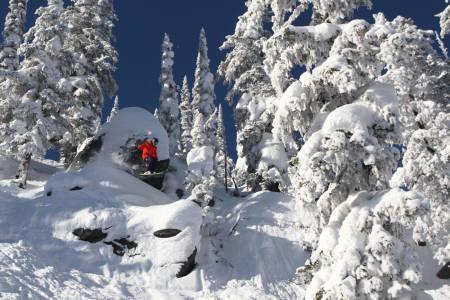 Gjett om Sam Kuch skal tappe denne vesle snøsoppen?