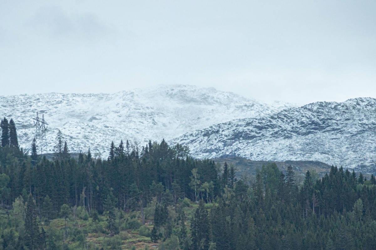 SNØFALL: Her ligger snøen rundt 1000-1100 moh. Foto: Sogndal Skisenter - Hodlekve