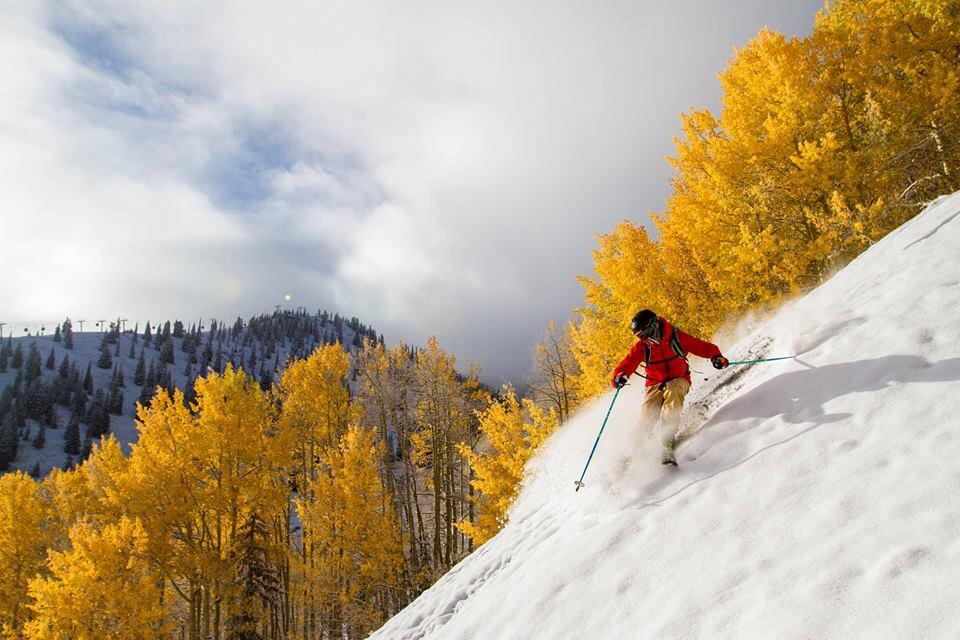 HVIT HØST: Gule trær og fin nysnø i Aspen i Colorado. Foto: Jesse Hoffman