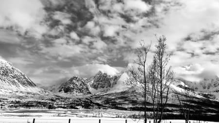 Ski Norway and Die