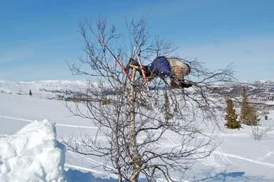 BRUDDSKADE: Eirik Braathen viser at det også kan gå galt i skitrehopping, her fra da han knakk buska i oppvarmingsrunden