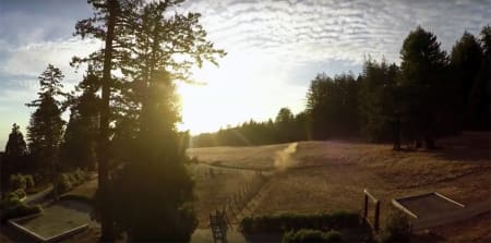 FLYR: Slik ser GoPro-opptaket fra flyvningen ut. Foto: Skjermdump