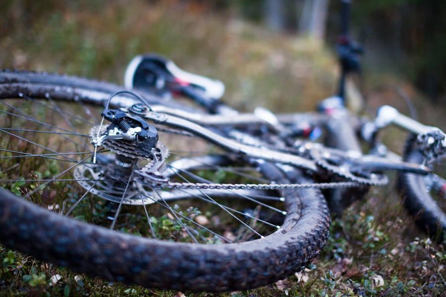 HJULESTEMNING: Store hjul kommer på stadig flere sykler. Fri Flyt tar oppgaven å teste for deg. Foto: Christian Nerdrum