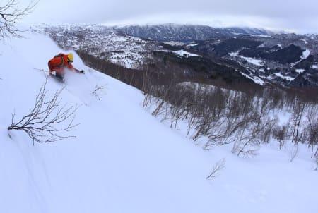 TESTING TESTING: Det er moro å teste skijakke når det er slike forhold. Bildet er fra Strandafjellet. Foto: Hans Petter Hval