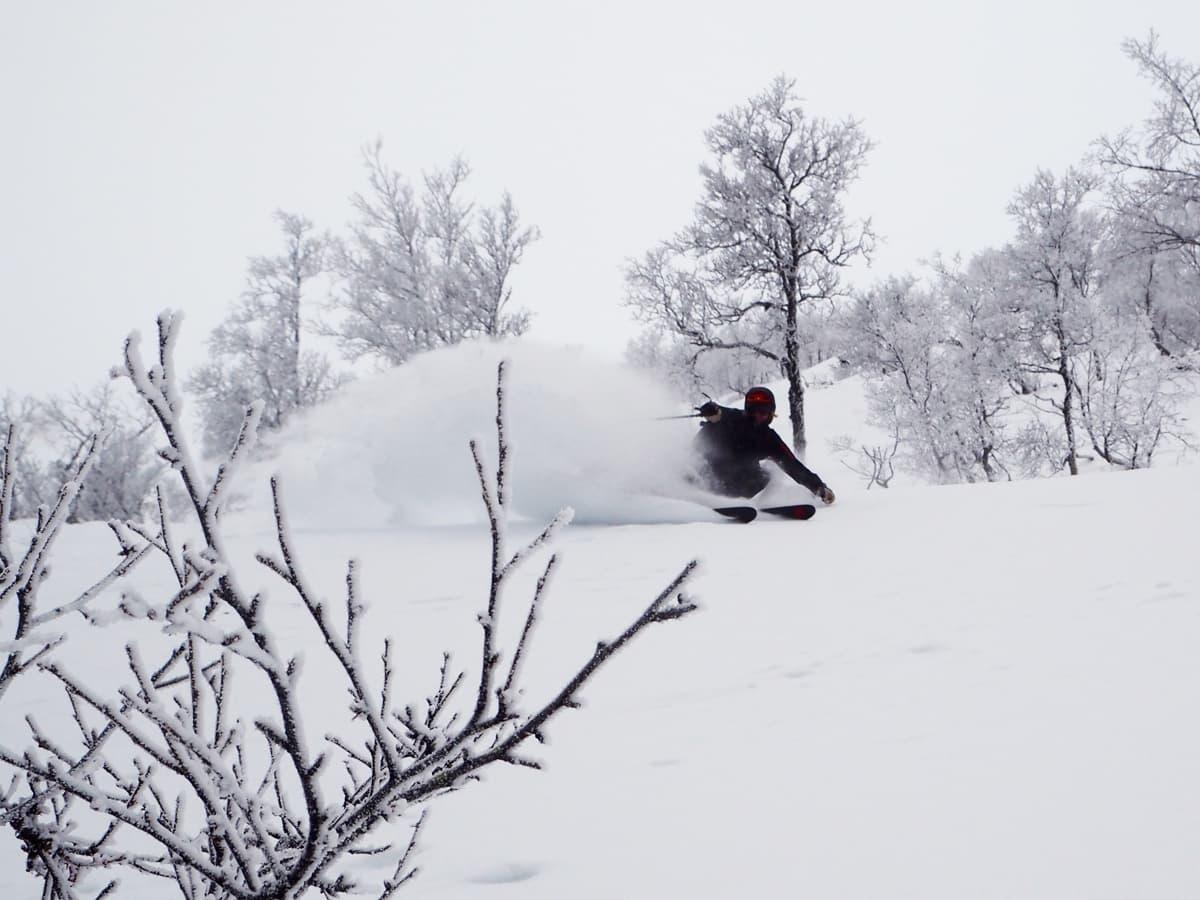 SJEF: Festivalsjef Brynjar Åmot viser hvem som bestemmer over raulandsk snø. Foto: Magnus Utkilen