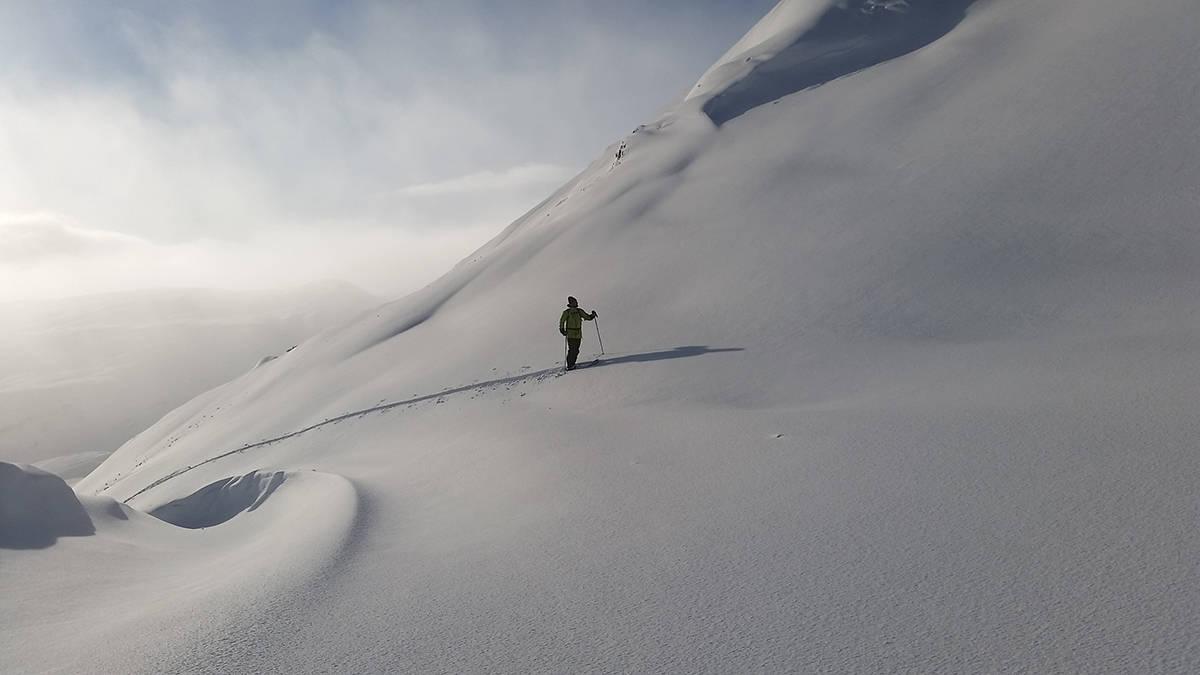 TOPPTUR: Slik så det ut på Vikafjellet i helga. Foto: Ruben Nygaard