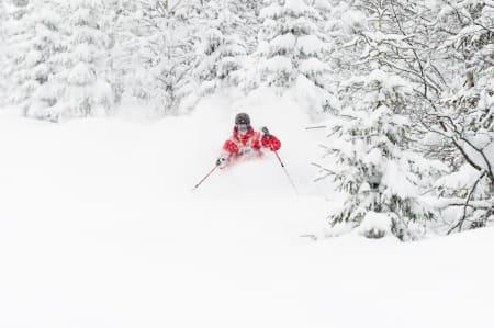 MER AV DETTE: Denne type kjøring får du enda mer av i Trysil i vinter – om snøforholdene slår til som da Ola Persson (bildet) satte denne svingen. Foto: Ola Matsson/Skistar