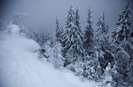 DJUPT: Knut Erik Ringnes svinger skiene ovenfor den tetteste skogen.