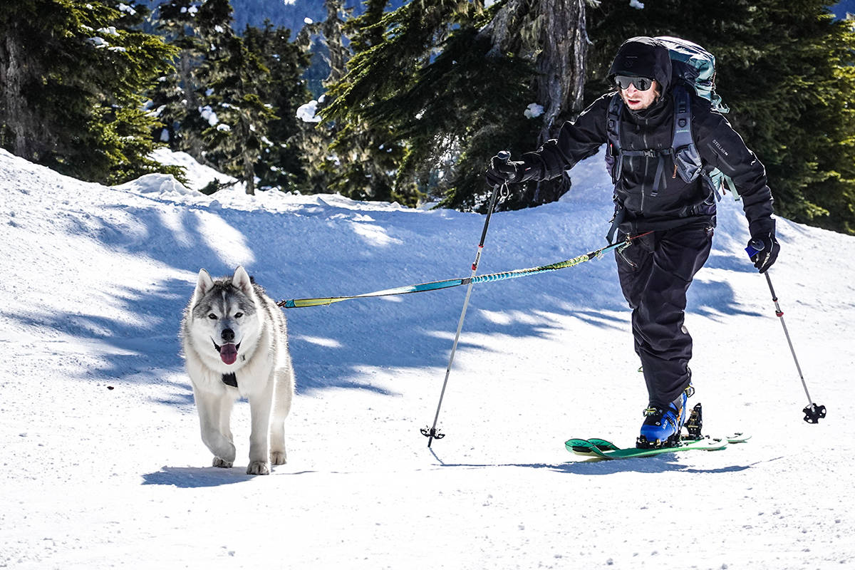 PÅ TUR: Mattias Fredriksson med sin sibirske husky Tikaani. Foto: David Kantermo