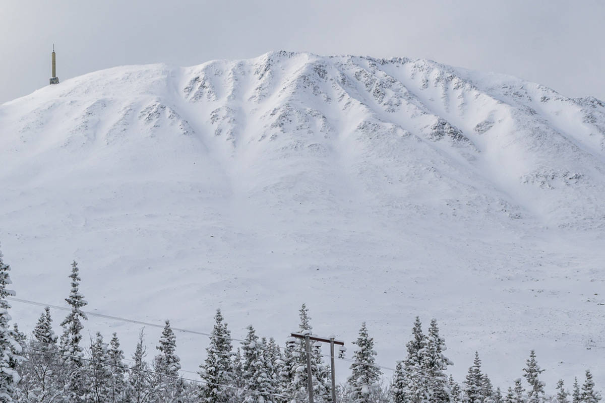 Gaustatoppen fri flyt topptur guide ski skisenter