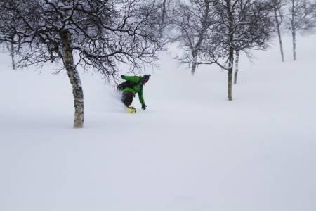 Haukelifjell skisenter freeride frikjøring alpint randonee