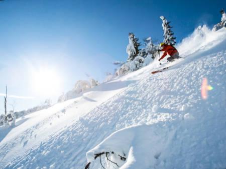 Norefjell guide skisenter pudder