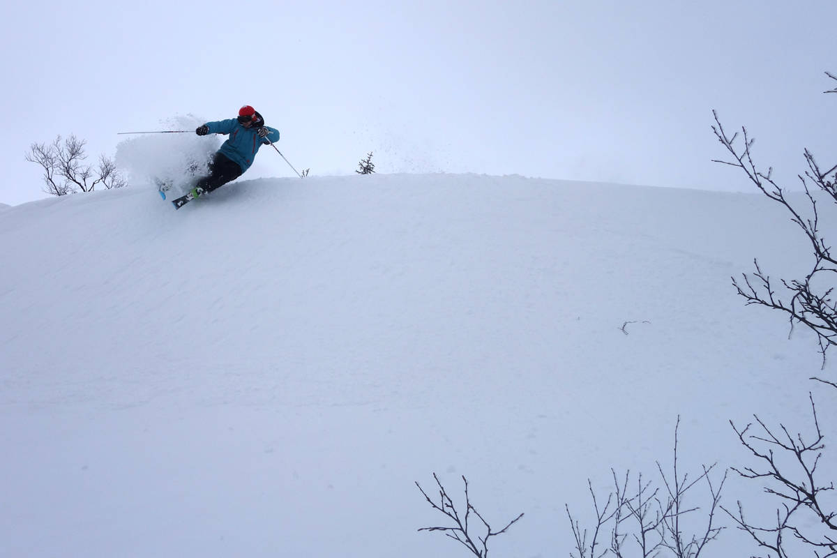 Norefjell puder snø ski snowboard freeride guide