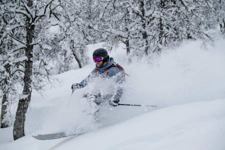Hodlekve pudder ski snowboard fri flyt skipatruljen