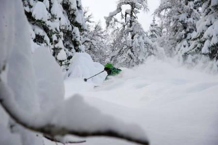 Voss freeride frikjøring ski snowboard alpint skisenter resort pudder snø topptur randonee