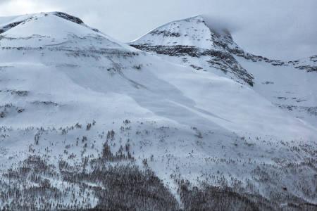 Tamok snøskred