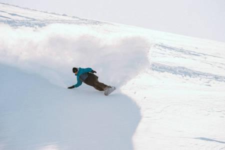 snowboard split board