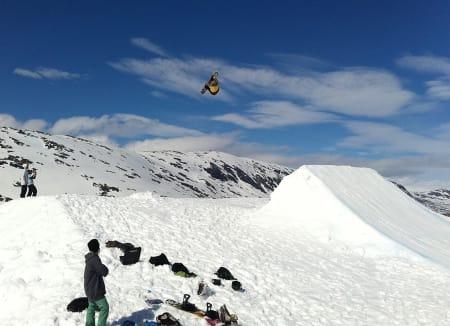 SPESIALHOPP: Fine greier på Stryn! Foto: Ola Keul