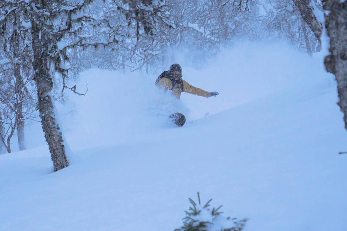 Snowboard sogn splitboard