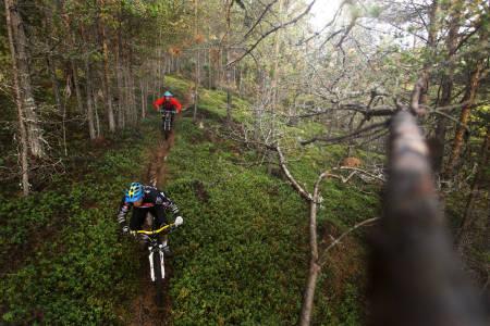 NORGES BESTE: Vårt langstrakte land er fullt av deilige sykkelstier, men noen er bedre enn andre, som Sogndal (bildet). Vi gir deg fem av de beste, norske destinasjonene for stisykling. Foto: Kristoffer H. Kippernes