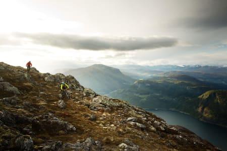 BRATT FJORDSYKLING: Stig Wigum og Knut Myking utnytter de siste glimtene med kveldssol til å sette fart ned mot Sogndal fra Storhaugen. Foto: Kristoffer H. Kippernes